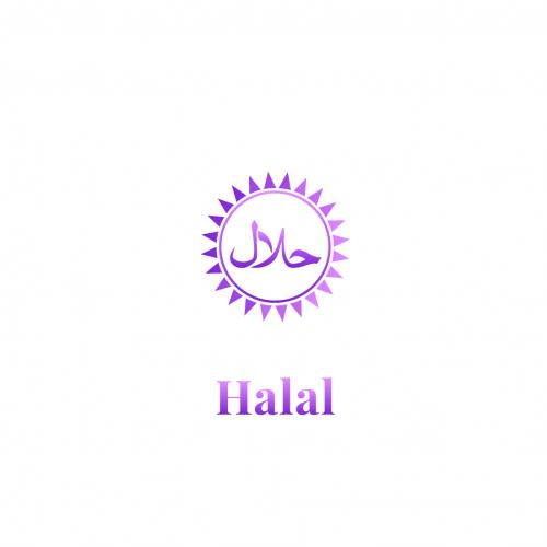Halal_qfoodsproducts-01